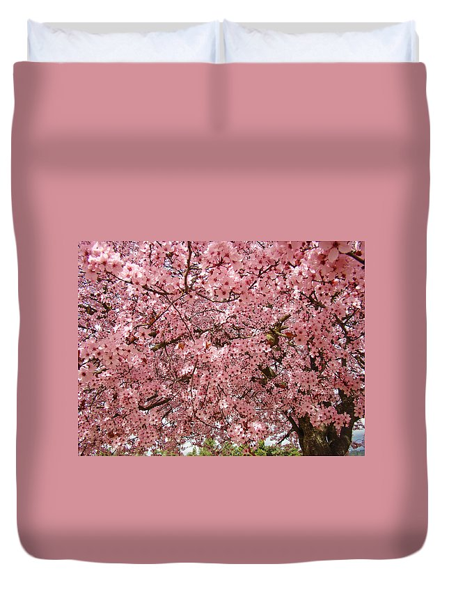 Tree Duvet Cover featuring the photograph Tree Blossoms Pink Blossoms Art Prints Giclee Flower Landscape Artwork by Baslee Troutman