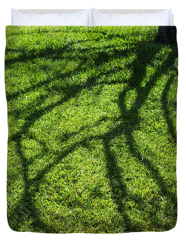 Green Duvet Cover featuring the photograph Tree Branch Shadow by Pam Elliott