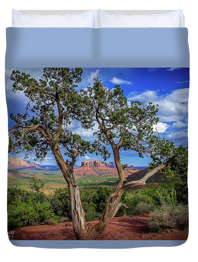 Sedona Duvet Cover featuring the photograph Tree Captures Sedona by Gordon McDaniel