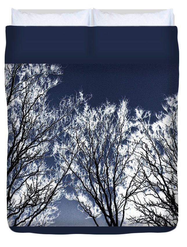 Scenic Duvet Cover featuring the photograph Tree Fantasy 2 by Lee Santa