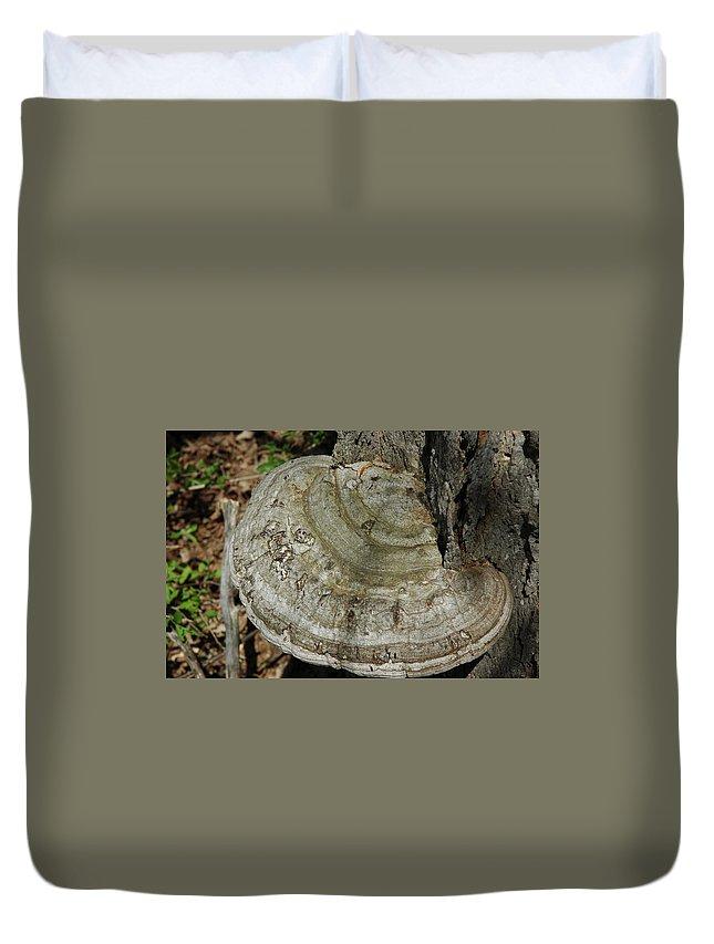 Usa Duvet Cover featuring the photograph Tree Fungi by LeeAnn McLaneGoetz McLaneGoetzStudioLLCcom