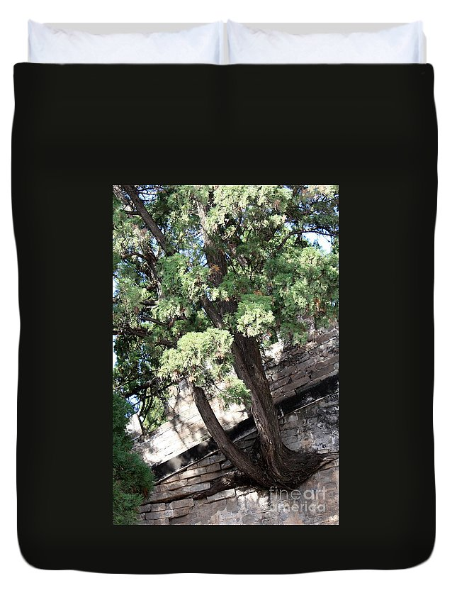 China Duvet Cover featuring the photograph Tree Growing Through Wall by Carol Groenen