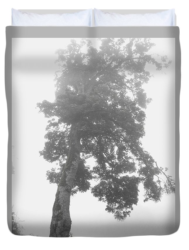 Tree Duvet Cover featuring the photograph Tree In The Fog by Bojan Babic