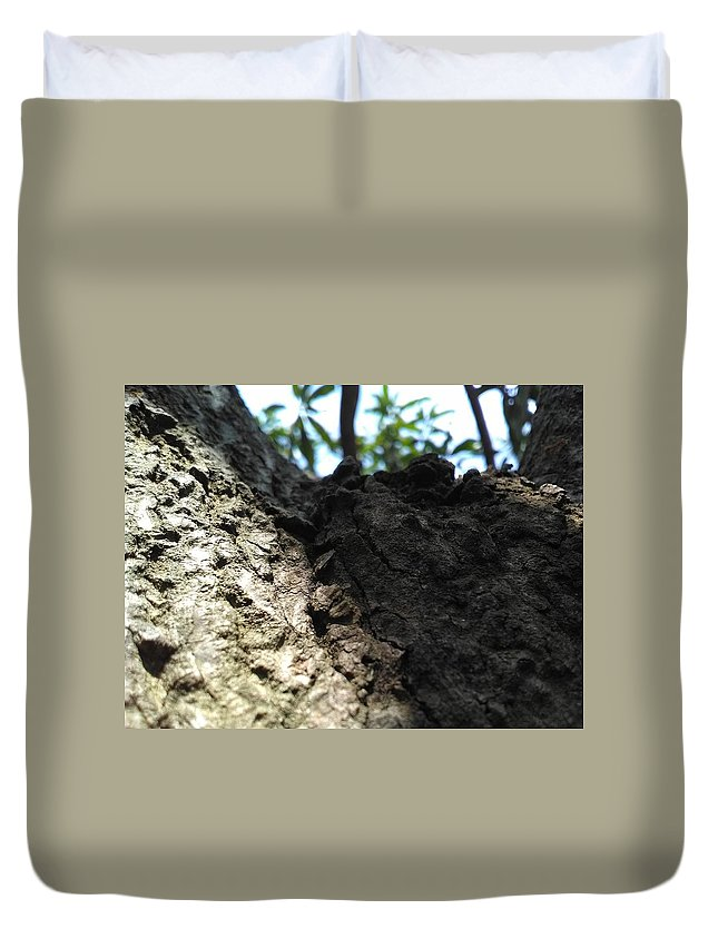 Tree Duvet Cover featuring the photograph Tree Macro View by Arish V