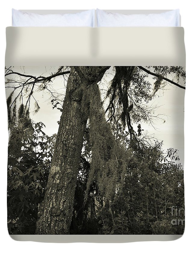 Moss Duvet Cover featuring the photograph Tree Moss by Marc Watkins