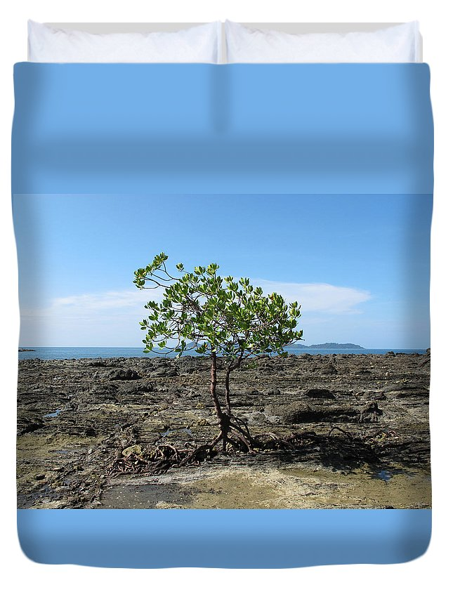 Tree Duvet Cover featuring the photograph Tree On The Rocks by Eline Van Nes