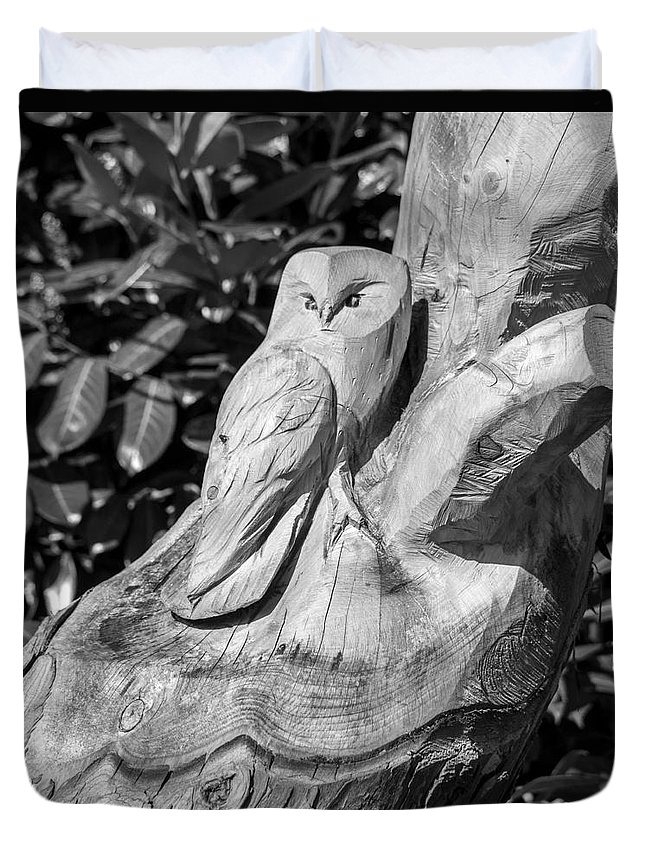 Tree Duvet Cover featuring the photograph Tree Owl by Rob Hawkins