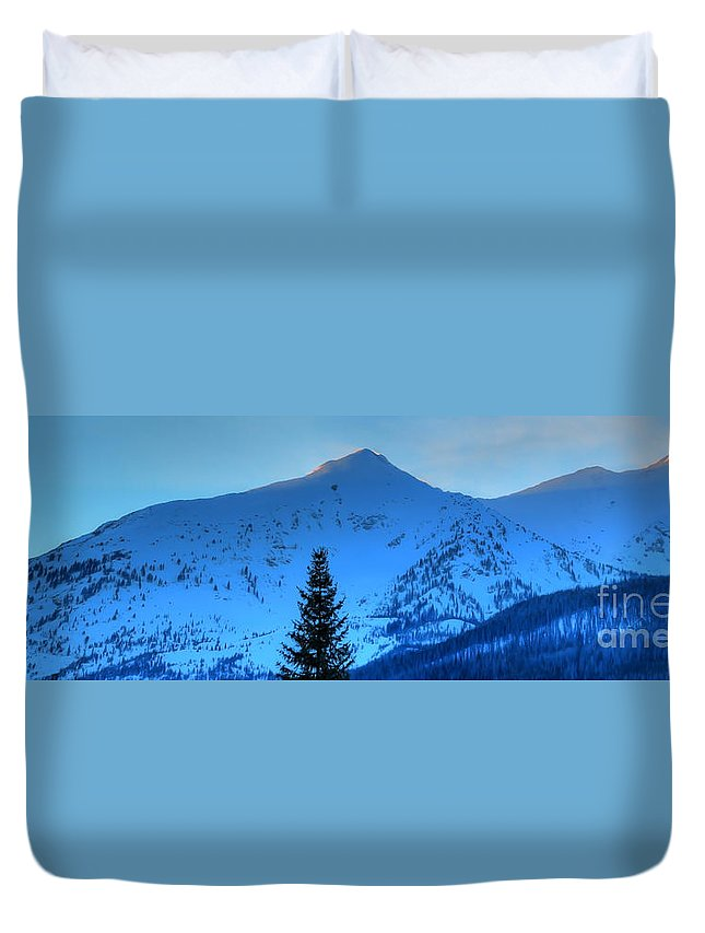 Landscape Duvet Cover featuring the photograph Tree Pano by Russell Smith