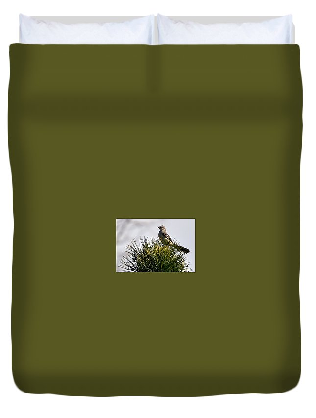 Bird Duvet Cover featuring the photograph Tree Topper by Glenda Ward