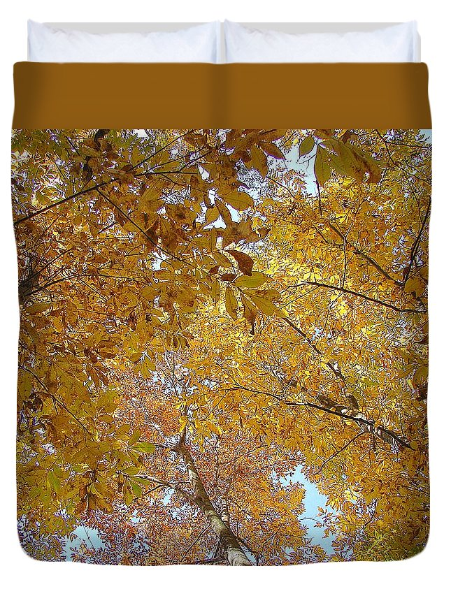 Duvet Cover featuring the photograph Tree Tops by Luciana Seymour