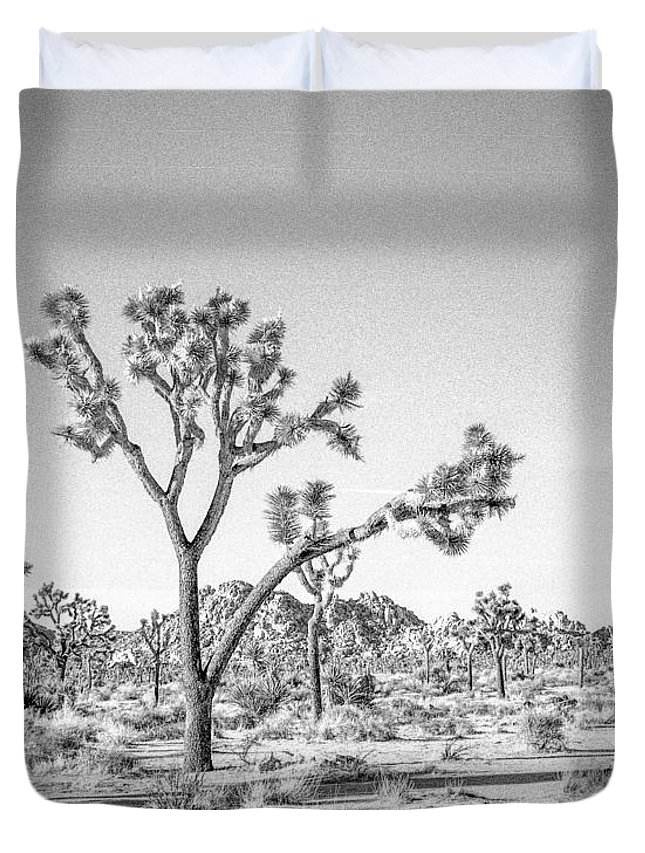 Joshua Tree Duvet Cover featuring the photograph Tree Valley by Alex Snay