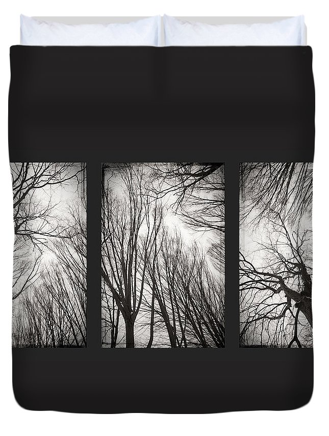 Black&white Duvet Cover featuring the photograph Treeology by Dorit Fuhg