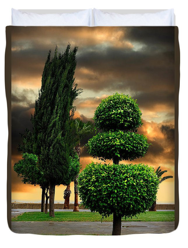Trees Duvet Cover featuring the photograph Trees In A Park Of Limassol City Sea Front In Cyprus by Oleksiy Maksymenko