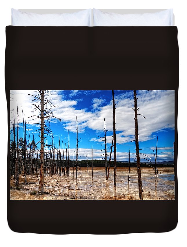 Wyoming Duvet Cover featuring the photograph Trees In The Midway Geyser Basin by Lars Lentz