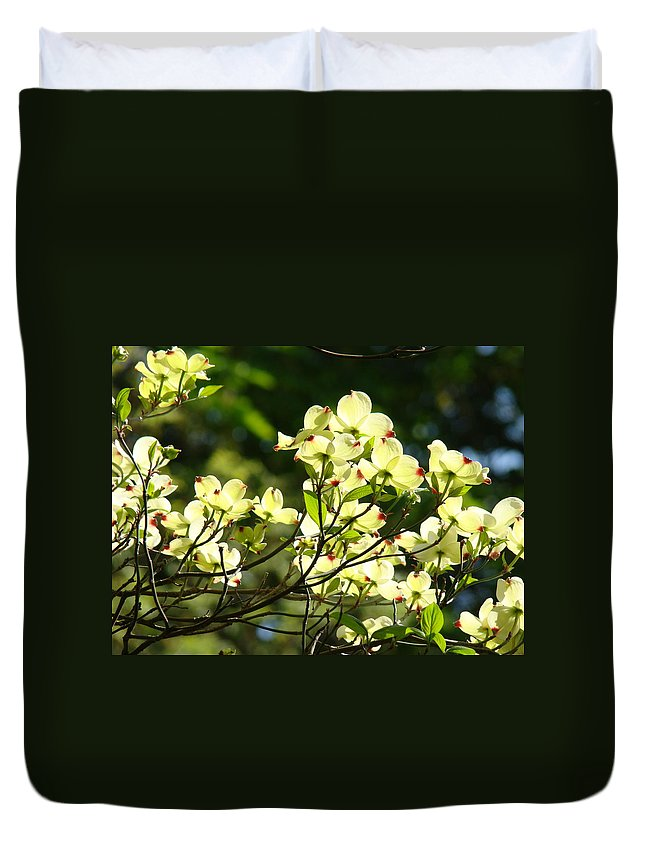 Dogwood Duvet Cover featuring the photograph Trees Landscape Art Sunlit White Dogwood Flowers Baslee Troutman by Baslee Troutman