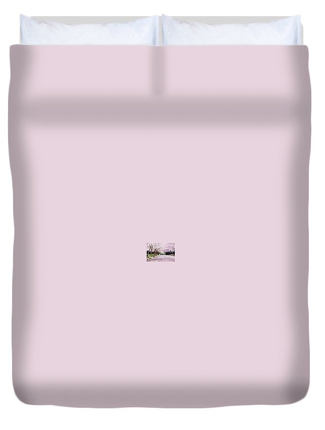 Cherry Blossom Duvet Cover featuring the photograph Trees Of Pink by Charlie Latham