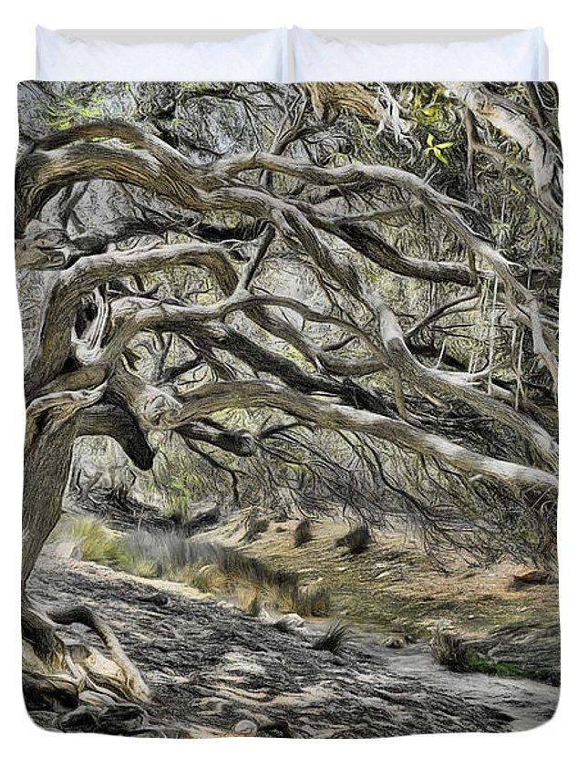 Ziarat Trees Duvet Cover featuring the digital art Trees Of Ziarat by Syed Muhammad Munir ul Haq