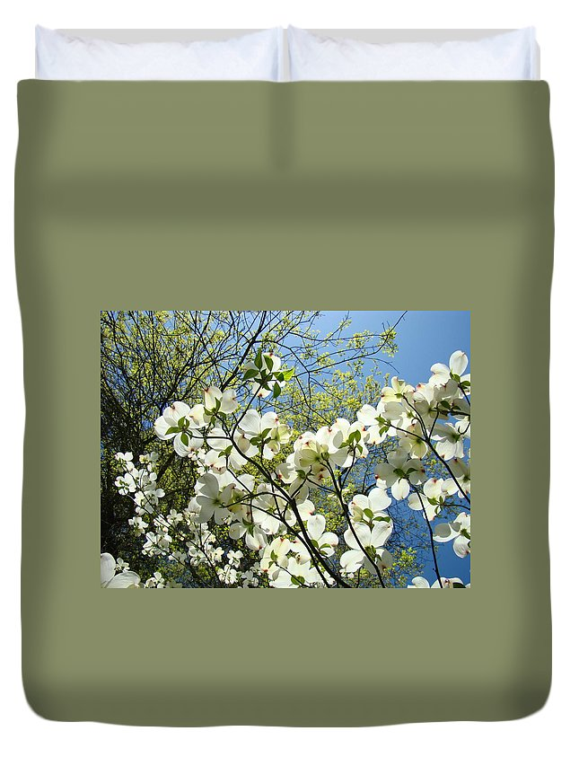 Dogwood Duvet Cover featuring the photograph Trees Sunlit White Dogwood Art Print Botanical Baslee Troutman by Baslee Troutman