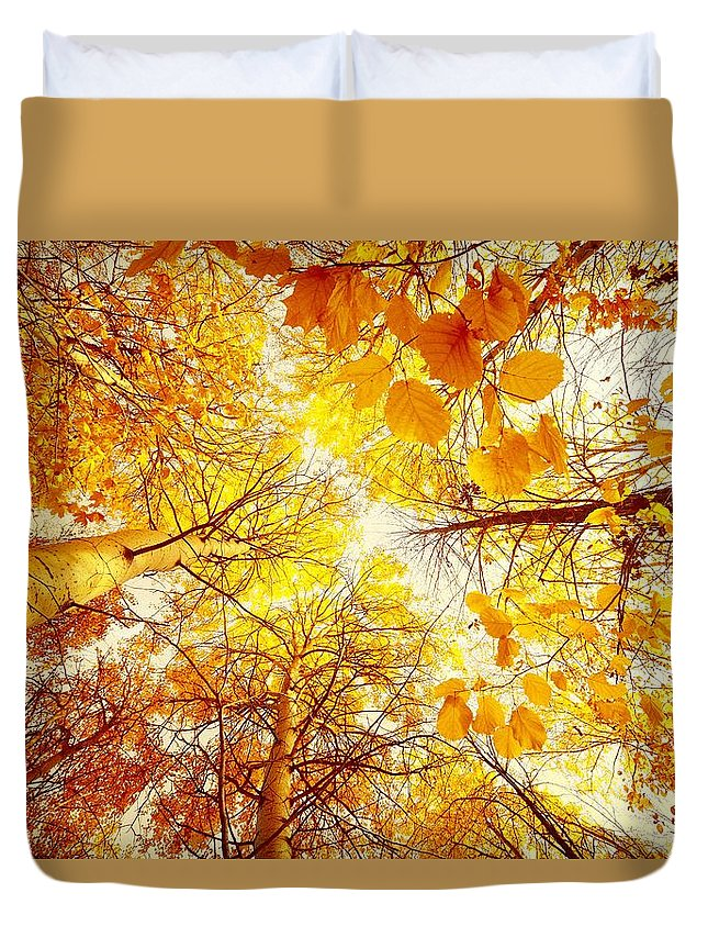 Trees Duvet Cover featuring the painting Trees Toward The Sun by Galeria Trompiz