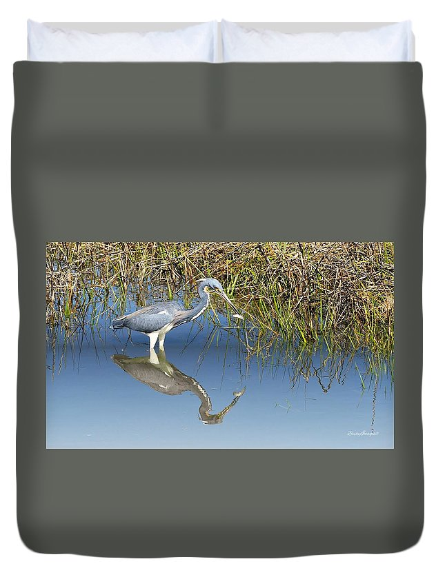 Tricolor Reflection Duvet Cover featuring the photograph Tricolor Reflection by William Bosley