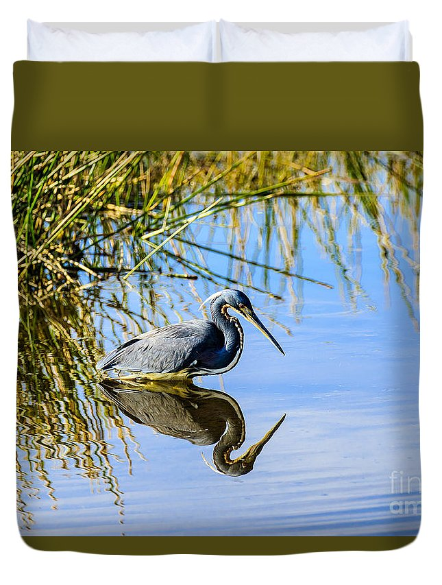 Tricolored Heron Duvet Cover featuring the photograph Tricolored Heron 2 by Ben Graham