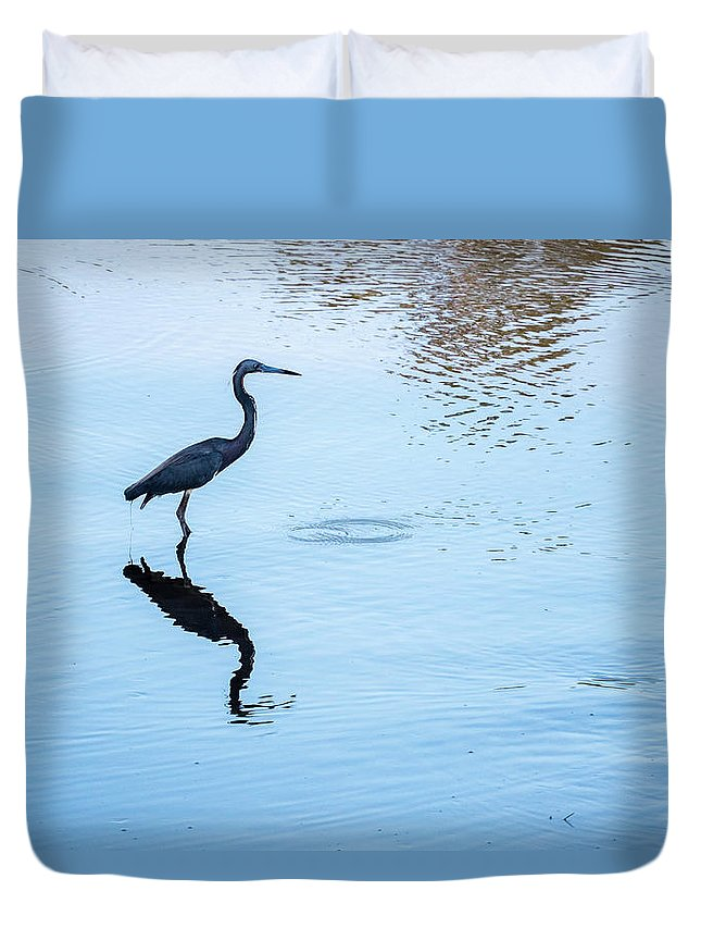 Tricolored Heron Duvet Cover featuring the photograph Tricolored Heron Silhouette by David Ramage