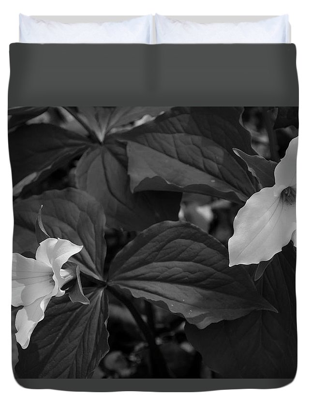Digital Duvet Cover featuring the photograph Trillium Bw by Jeff Roney