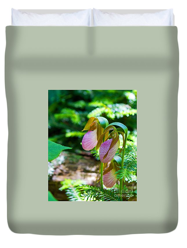 Lady Slipper Duvet Cover featuring the photograph Trio Of Slippers by Lloyd Alexander