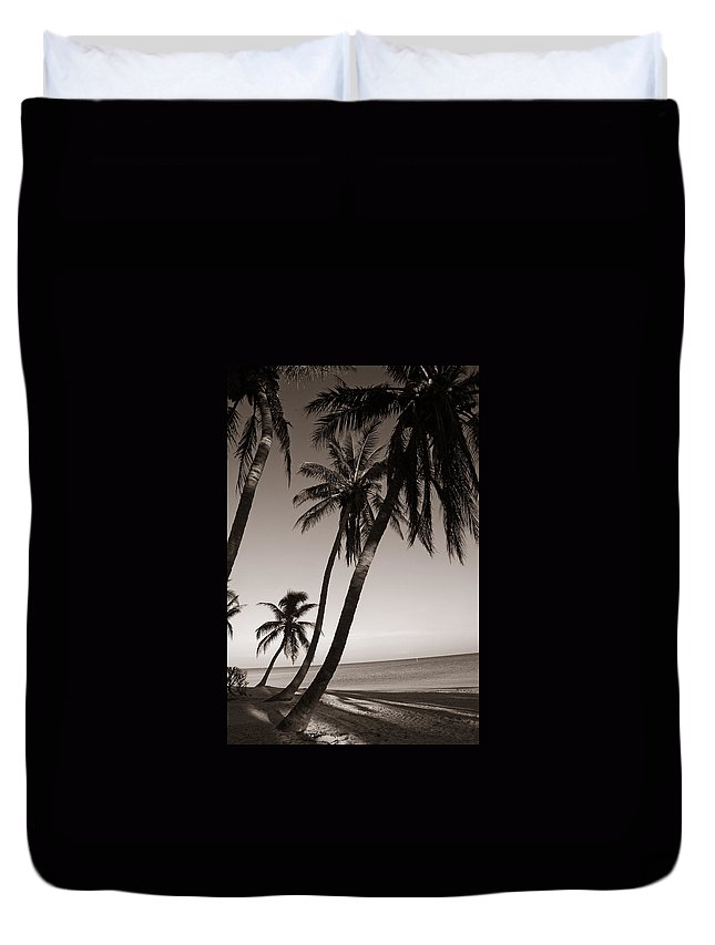 Black And White Photography Duvet Cover featuring the photograph Triple Palms by Susanne Van Hulst