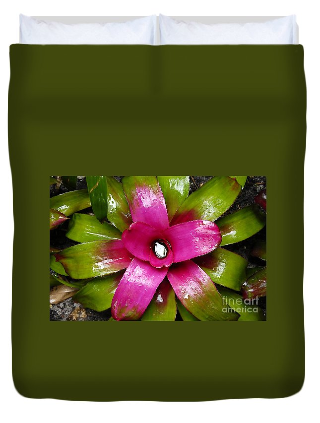 Tropical Duvet Cover featuring the photograph Tropic Wonder by David Lee Thompson