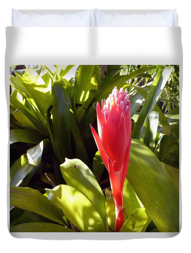 Flowers Duvet Cover featuring the photograph Tropical Bloom by Tina M Wenger