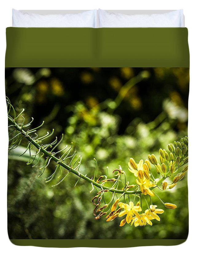Close-up Duvet Cover featuring the photograph Tropical Flowers 7 by Jijo George