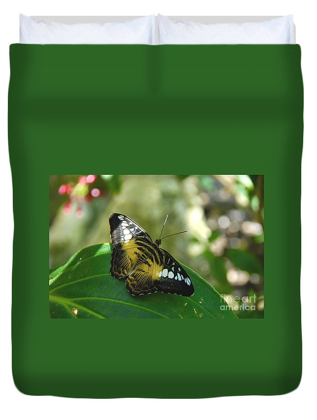 Butterfly Duvet Cover featuring the photograph Tropical Garden Beauty by David Lee Thompson