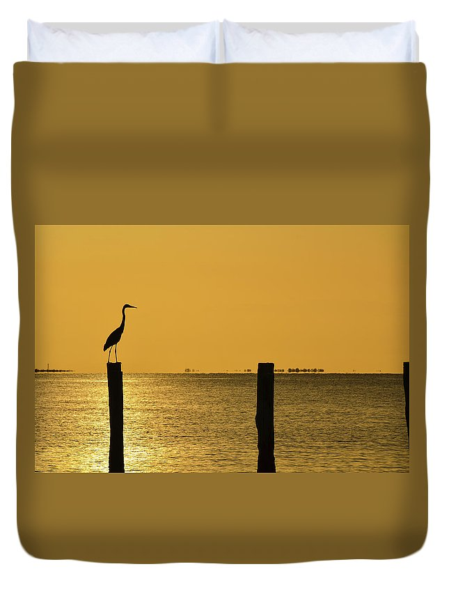 Heron Duvet Cover featuring the photograph Tropical Orange by Artful Imagery