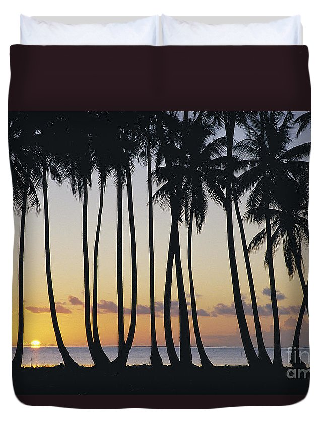 Afternoon Duvet Cover featuring the photograph Tropical Palm Sunset by Don King - Printscapes