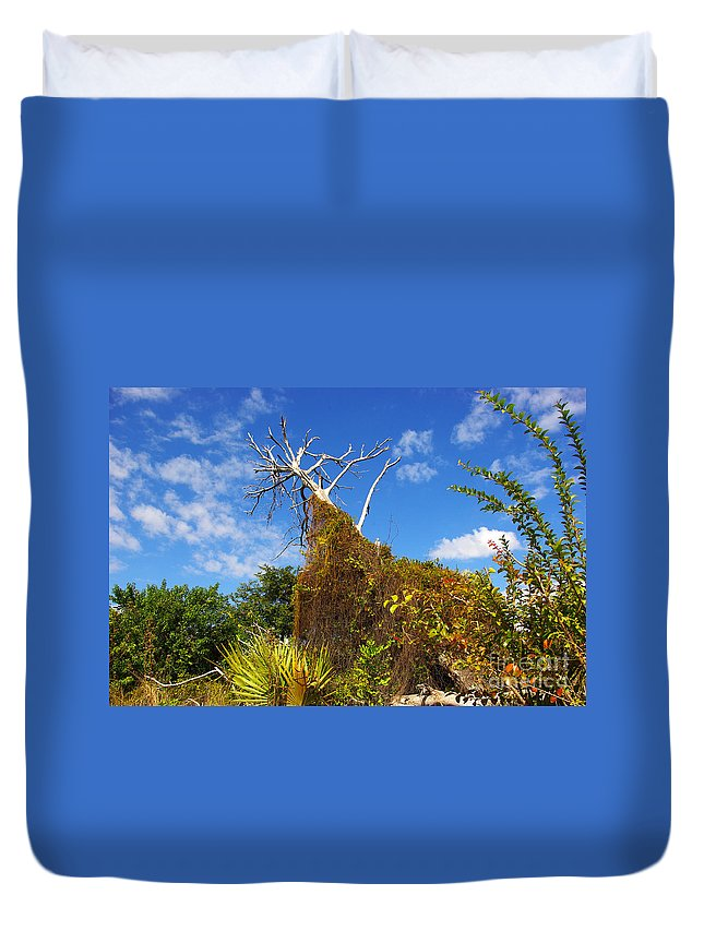 Duvet Cover featuring the photograph Tropical Plants In A Preserve In Florida by Zal Latzkovich