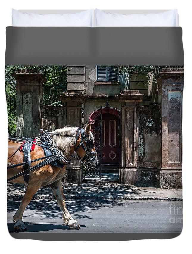Trotting Into The Past Duvet Cover featuring the photograph Trotting Into The Past by Dale Powell