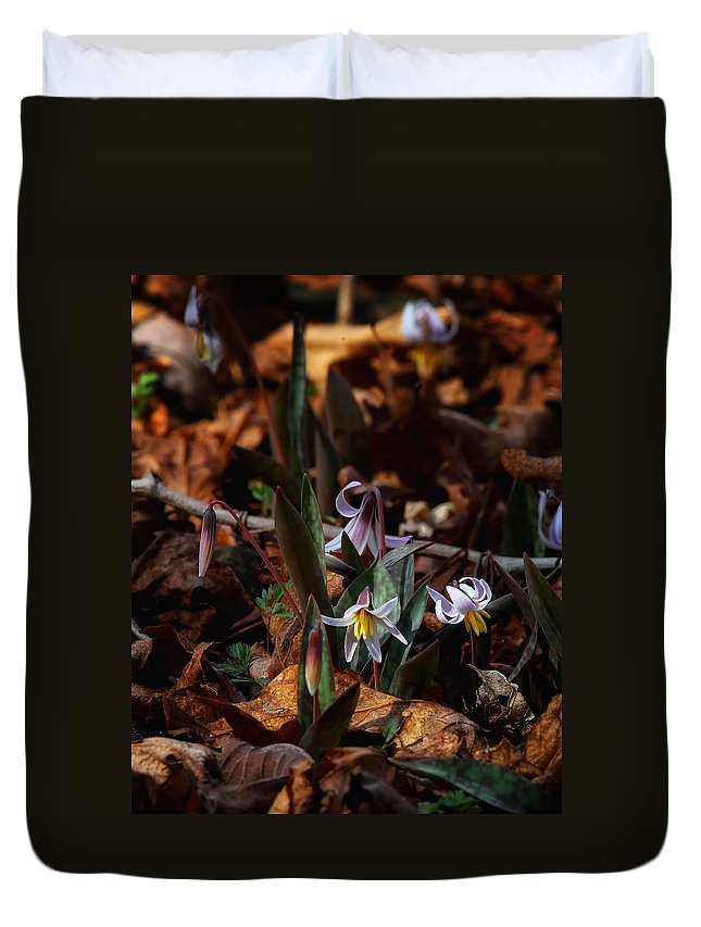 Trout Lillie Duvet Cover featuring the photograph Trout Lillie In Lost Valley by Michael Dougherty
