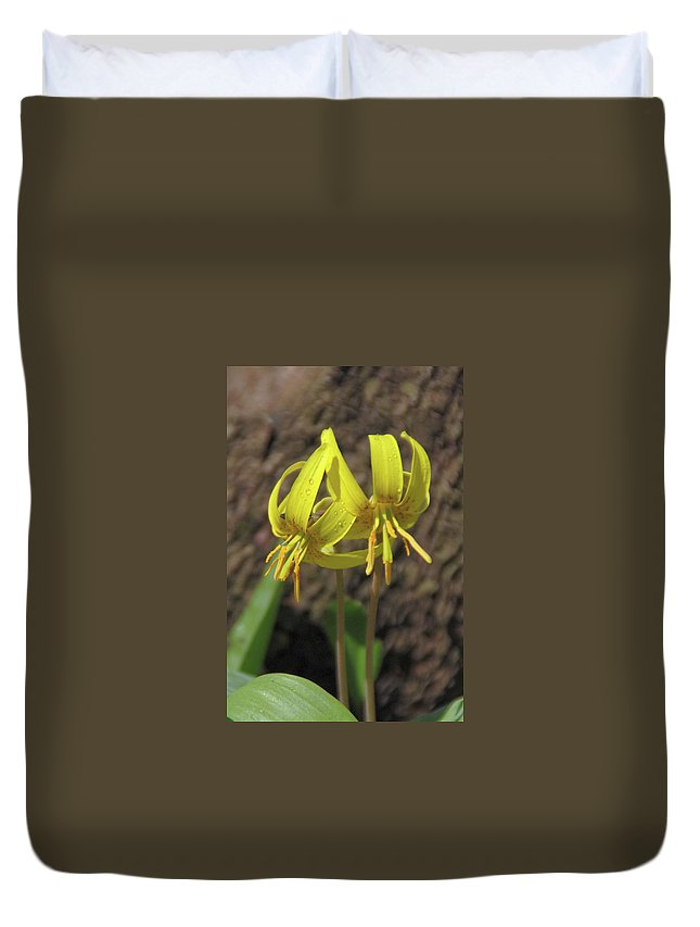 Flowers Duvet Cover featuring the photograph Trout Lily 1068 by Guy Whiteley