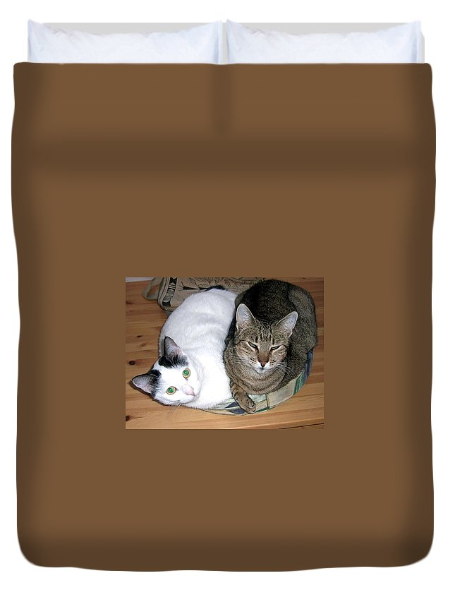 Cat Duvet Cover featuring the photograph True Love by Valerie Ornstein