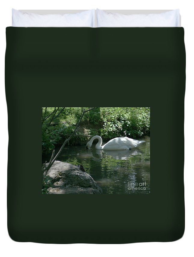 Trumpeter Swan Duvet Cover featuring the photograph Trumpeter Swan by Dawn Downour