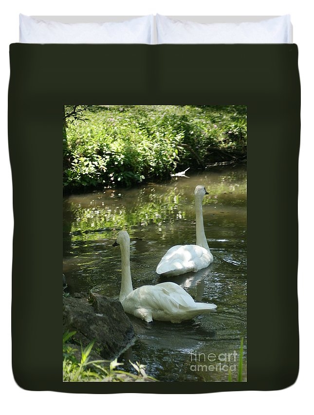 Water Duvet Cover featuring the photograph Trumpeter Swans by Dawn Downour