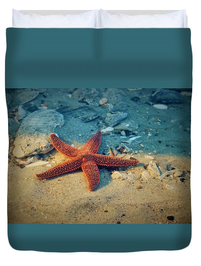 Starfish Duvet Cover featuring the photograph Try Not To Star-e by Sandra Bennett