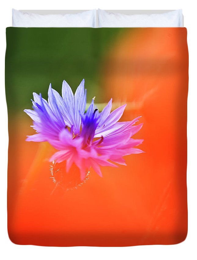 Cornflower Duvet Cover featuring the photograph Tucked Away 2 by Heiko Koehrer-Wagner