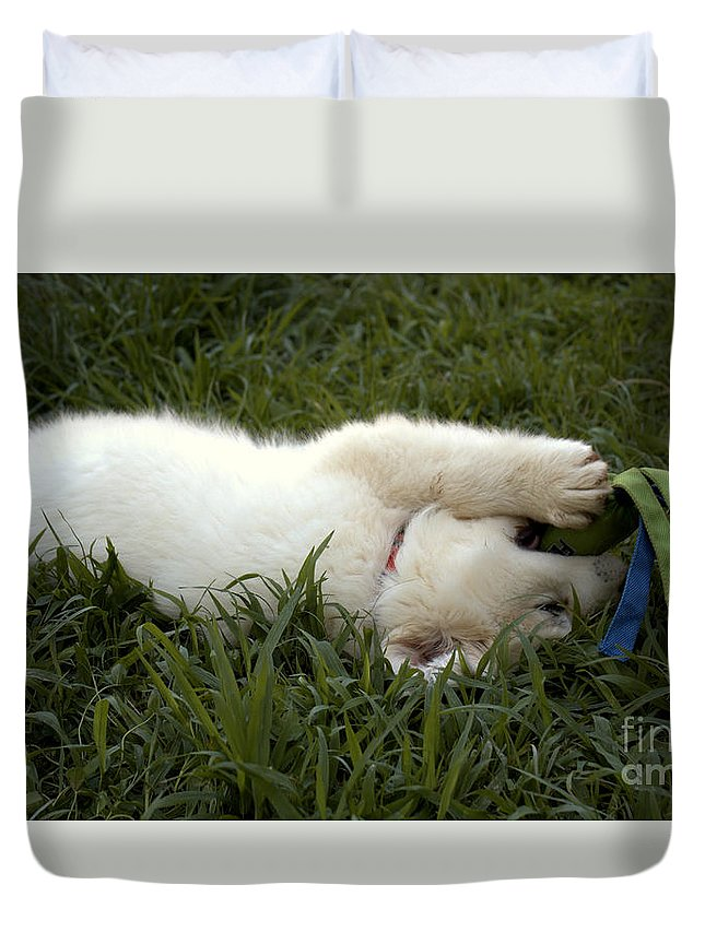 Puppy Duvet Cover featuring the photograph Tucker And His Toy by Pete Dionne