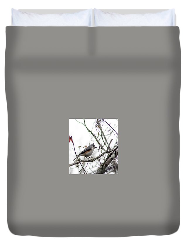 Duvet Cover featuring the photograph Tufted Titmouse by Norman Johnson