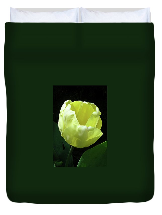 Flowers Duvet Cover featuring the photograph Tulip 0755 by Guy Whiteley