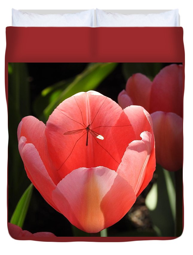 Mosquito Hawk Duvet Cover featuring the photograph Tulip And The Crane Fly by Sandra Peery