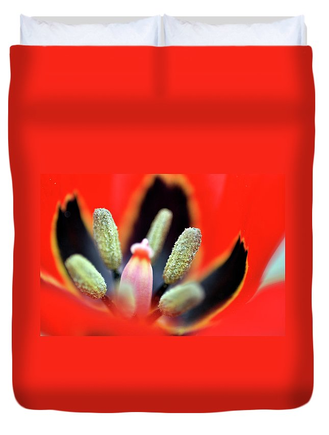Tulip Duvet Cover featuring the photograph Tulip At Amatzia Forest - 5 by Dubi Roman