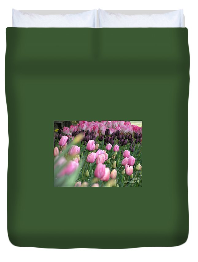 Tulips Duvet Cover featuring the photograph Tulip Dreams by Louise Magno